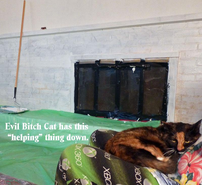 Evil-Bitch-Cat-Helping